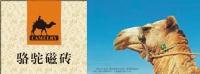 佛山骆驼陶瓷新锐品牌稳步推进 首期招商工作成效显著